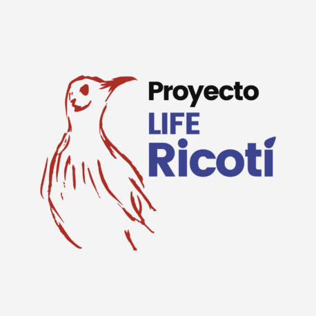 Life Ricotí